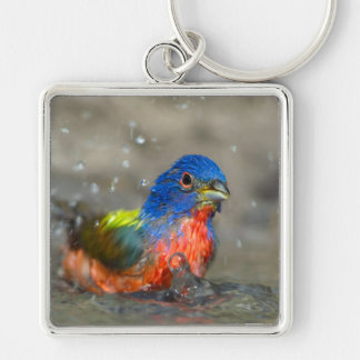 """Bathing Male Painted Bunting """"Passerina ciris"""" Silver-Colored Square Keychain"""