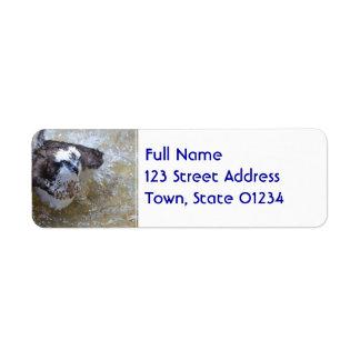 Bathing Osprey Custom Return Address Label