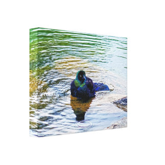 Bathing Time for the Starling #2 Canvas Print