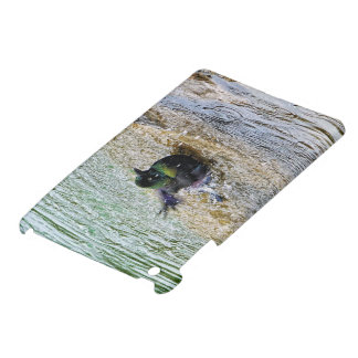 Bathing Time for the Starling iPad Mini Case