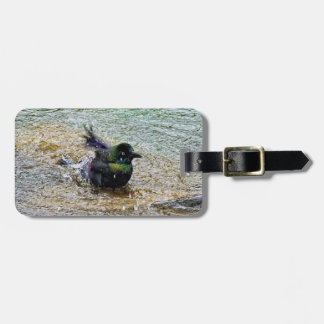 Bathing Time for the Starling Luggage Tag