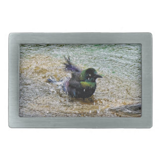 Bathing Time for the Starling Rectangular Belt Buckle