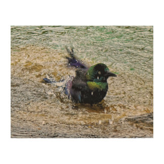 Bathing Time for the Starling Wood Wall Art