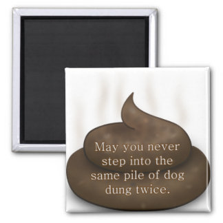 Bathroom Blessing: Don't Step in Poop Twice 2 Inch Square Magnet