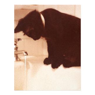 Bathroom Pepper Black Cat Custom Letterhead