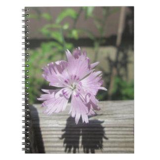Baths Pink Dianthus on Fence Spiral Notebook