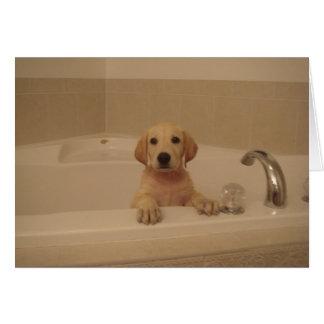 Bathtime Fun! (Blank) Card