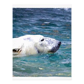 Batimiento del oso polar membrete a diseño