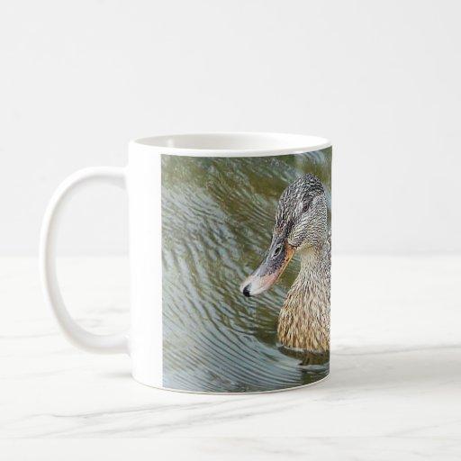 Batimiento del pato taza de café
