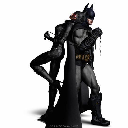 Boy girl batman arkham city batman series catwoman