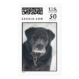Batman in the Snow Postage