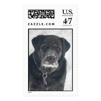 Batman in the Snow Postage Stamp