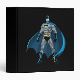 Batman Kicks 3 Ring Binders
