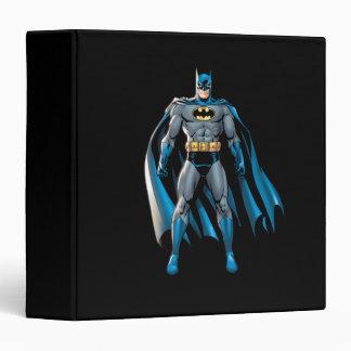 Batman Stands Up Binders