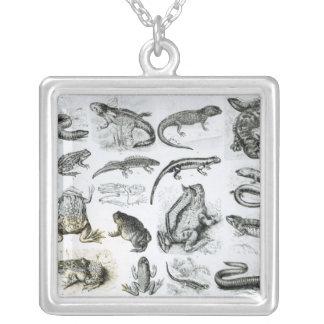 Batrachians and other Amphibia Square Pendant Necklace