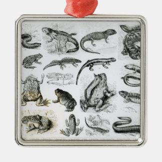 Batrachians and other Amphibia Square Metal Christmas Ornament