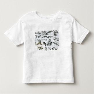 Batrachians and other Amphibia T Shirt