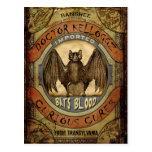Bats Blood Post Cards