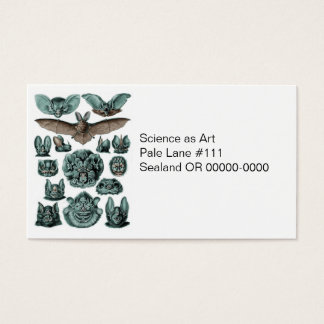Bats by Ernst Haeckel Business Card