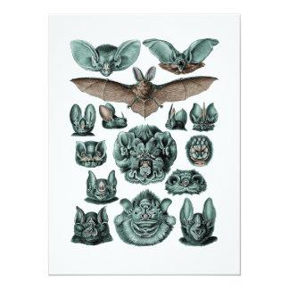 Bats by Ernst Haeckel Card