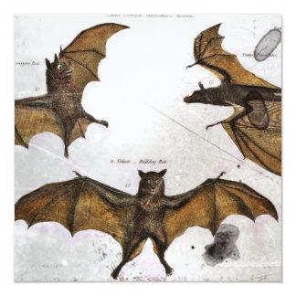 Bat's Educational Plate Card