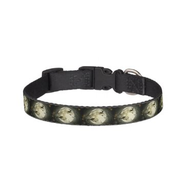 Halloween Themed Bats fly Crow sits in Front of Halloween Full Moon Pet Collar