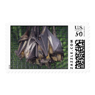 Bats Postage Stamps