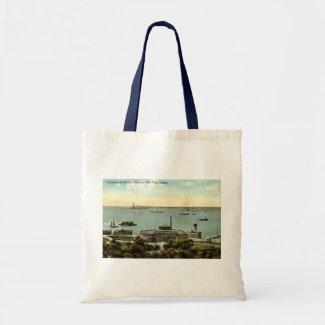 Battery Park Aquarium NY 1920 Vintage bag