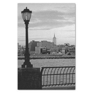 Battery Park City II Tissue Paper