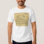 Battle of Fort Henry - Civil War Panoramic Map Tee Shirt