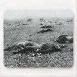 Battle of Gettysburg ~ Harvest of Death July 1863 Mousepad