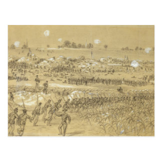 Battle of the Crater Postcard