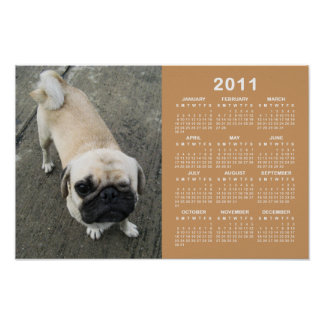 Bauwk ... Pug Dog 2011 Calendar Poster