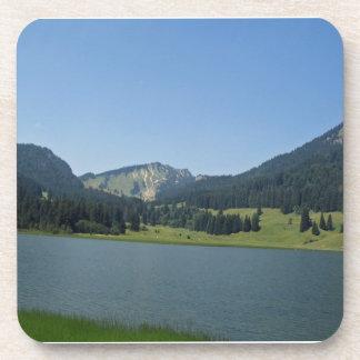 Bavarian Alps Coaster