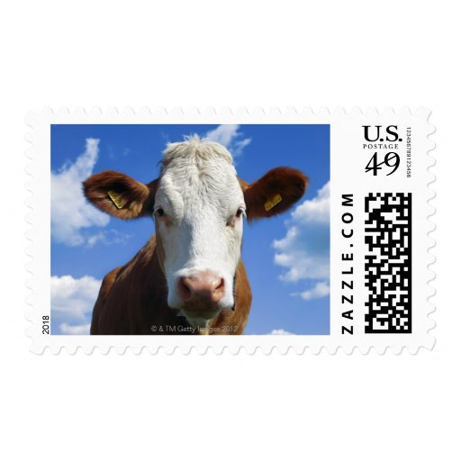 Bavarian cow against blue sky postage stamp