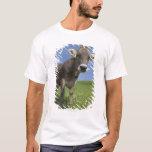 bavarian cow T-Shirt