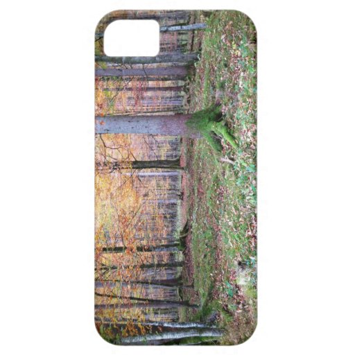 Bavarian Forest iPhone 5 Cases