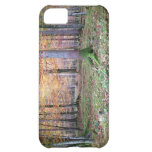 Bavarian Forest iPhone 5C Cases