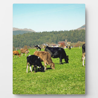 bavarian landscape photo plaques