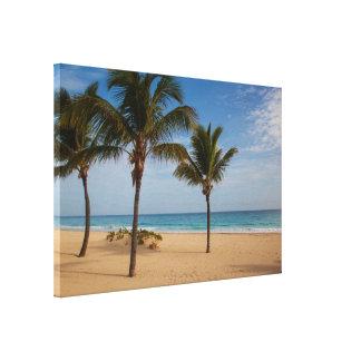 Bavaro Beach, Dominican Republic Coconut Trees Canvas Print