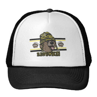 Bawsome Boston Awesome Hat