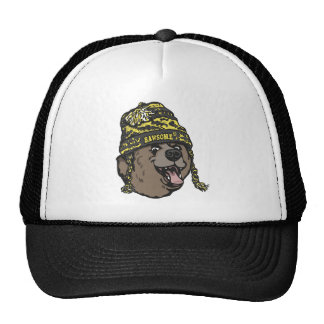 Bawsome Boston Awesome Mesh Hat