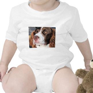 Baxter - perro de aguas de saltador inglés traje de bebé