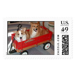 Baxter y Emmerson en carro Sellos