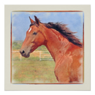 BAY ANDALUSIAN MARE POSTER