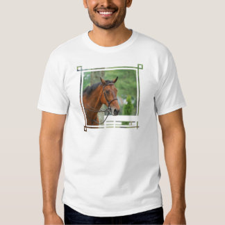 Bay Arab Horse Men's T-Shirt