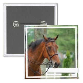Bay Arab Horse Pin
