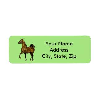 Bay Arabian Horse Label