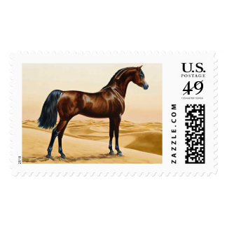 Bay Arabian Stallion Postage