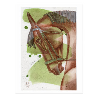 Bay Dressage Horse On Serpentine Watercolor Postcard